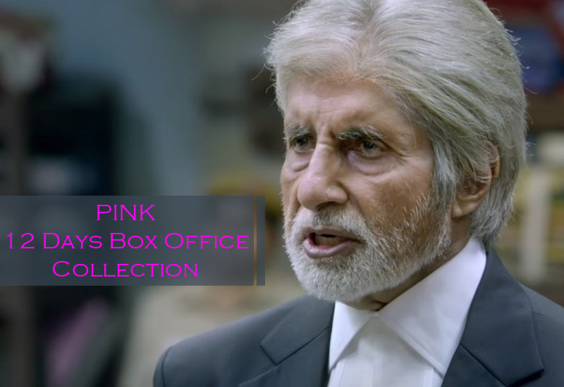 Pink Box Office Collection: Bachchan's 12 Days BO report