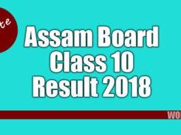 Assam Board Class 10 Results 2018