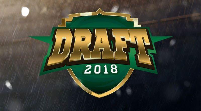 PSL 2019 Draft Complete List