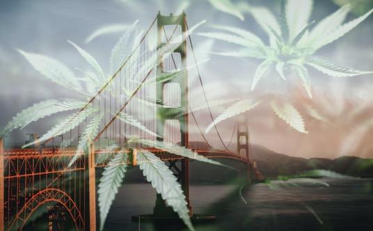 top california cannabis sites